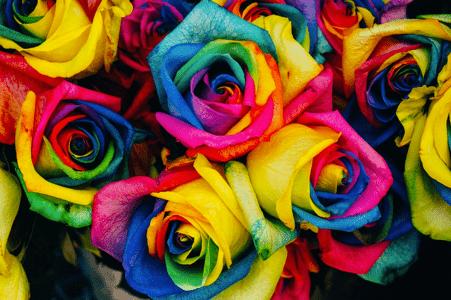 Magnifique fleur multicolore des artisans fleuristes Sessile