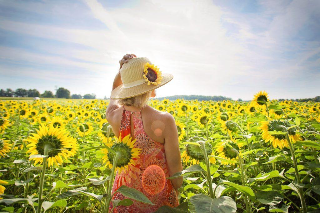 Magnifique fleur jaune des artisans fleuristes Sessile