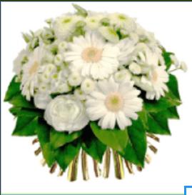 Bouquet de Roses Blanches Gerbera blanche