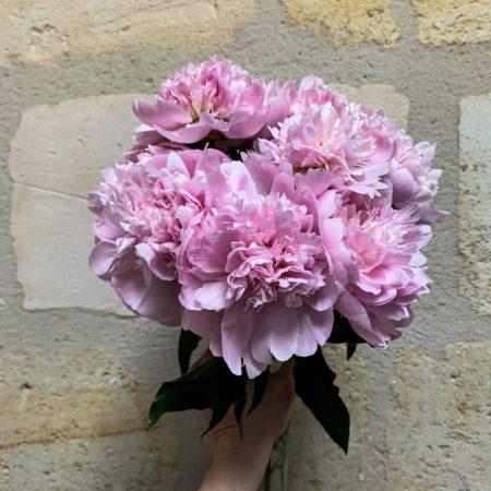 votre artisan fleuriste vous propose le bouquet : Le bouquet de Pivoines