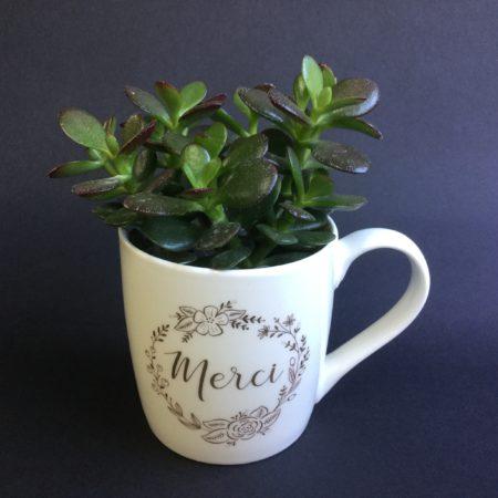 votre artisan fleuriste vous propose le bouquet : Merci