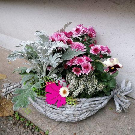 votre artisan fleuriste vous propose le bouquet : Coupe Planté Extérieure