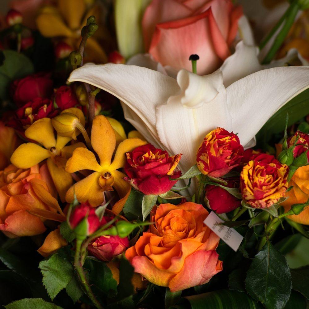 Bouquet Des Fêtes