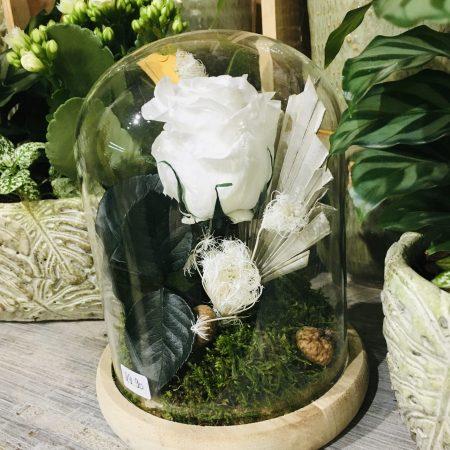 votre artisan fleuriste vous propose le bouquet : Rose Éternelle