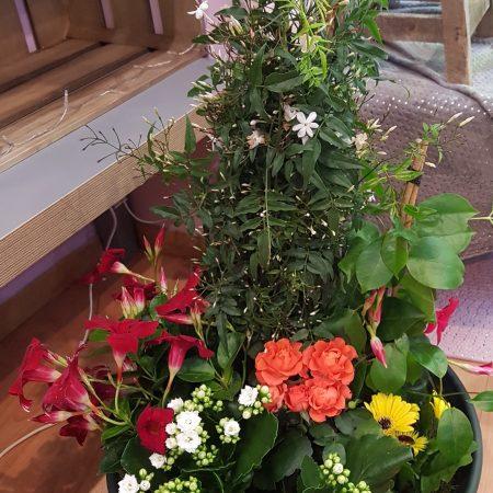 votre artisan fleuriste vous propose le bouquet : Coupe de plante deuil