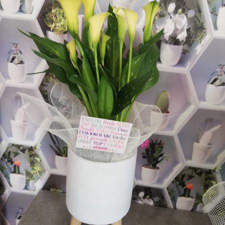votre artisan fleuriste vous propose le bouquet : Callas