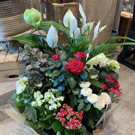 votre artisan fleuriste vous propose le bouquet : Coupe De Plante Extérieur