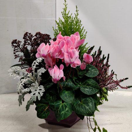votre artisan fleuriste vous propose le bouquet : Composition De Plante Extérieur