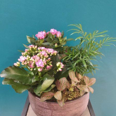 """votre artisan fleuriste vous propose le bouquet : Coupe de plantes """"inspirée"""""""