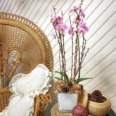 votre artisan fleuriste vous propose le bouquet : Orchidée