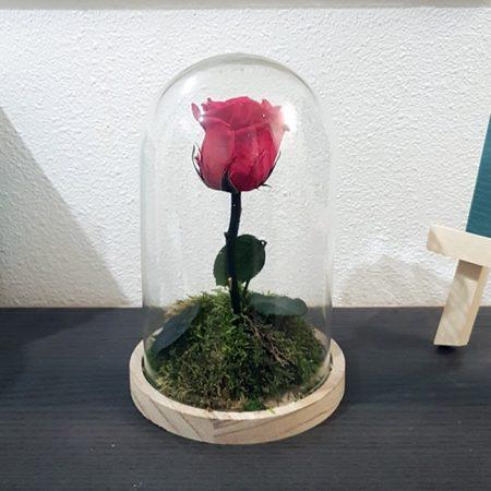 votre artisan fleuriste vous propose le bouquet : L'Immortelle