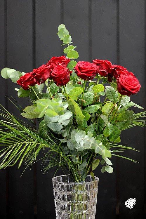 Roses de Pomme De Pin