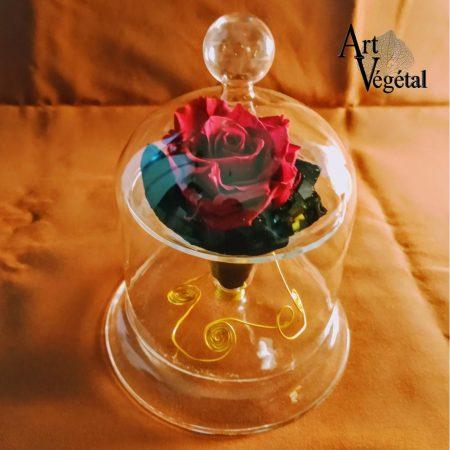 votre artisan fleuriste vous propose le bouquet : Rose Éternelle Sous Cloche
