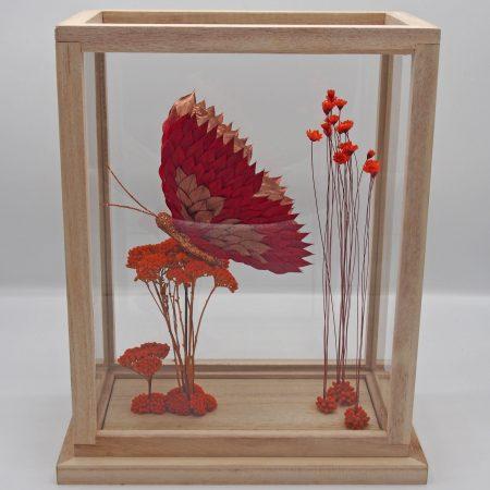 votre artisan fleuriste vous propose le bouquet : # Butterfly Display #
