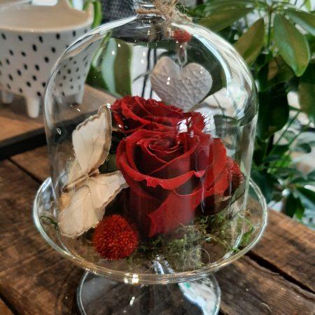 votre artisan fleuriste vous propose le bouquet : Rose Eternelle