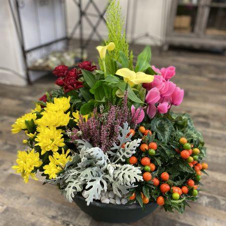 votre artisan fleuriste vous propose le bouquet : Coupe De Plantes