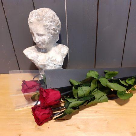 votre artisan fleuriste vous propose le bouquet : Rose Éternelle Rouge Dans Son Écrin Noir