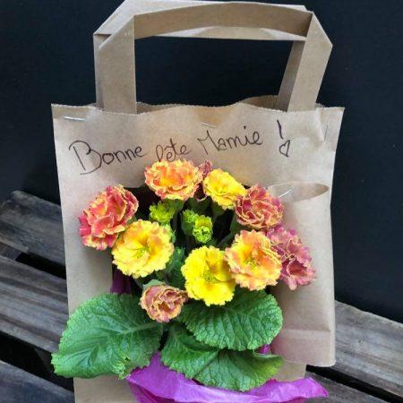 votre artisan fleuriste vous propose le bouquet : Spécial Fête Des Grands Mères Primevère