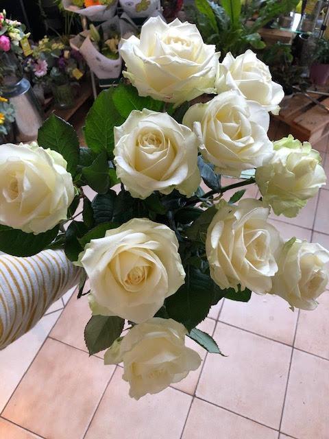Roses de Florilys