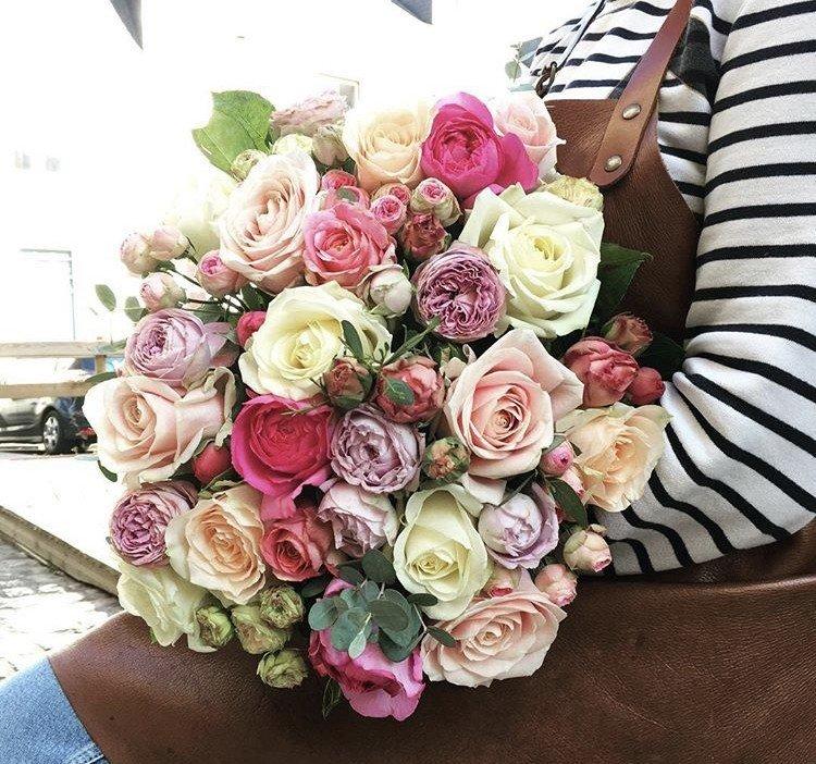 Roses de Maison Marguerite
