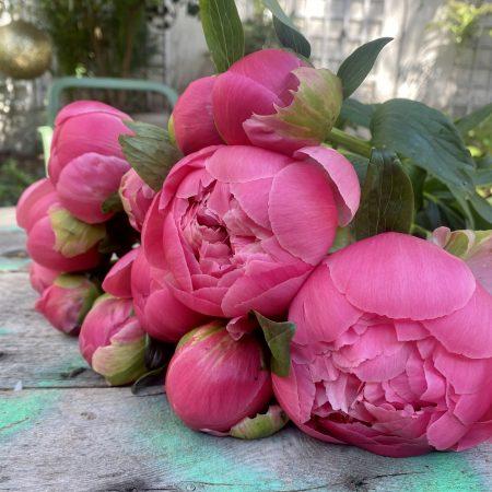 votre artisan fleuriste vous propose le bouquet : Bouquet de pivoines à l'unité