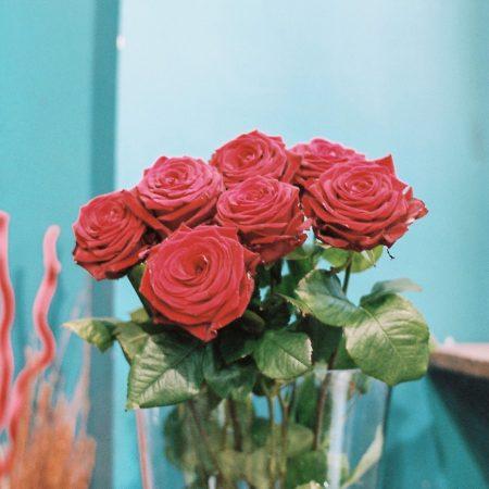 votre artisan fleuriste vous propose le bouquet : Roses de L'Histoire D'Une Fleur