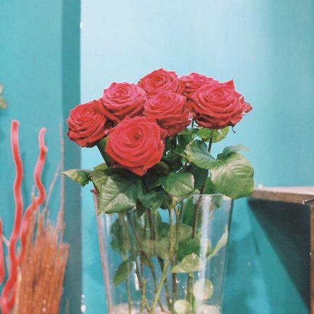 votre artisan fleuriste vous propose le bouquet : Roses de Au Muguet