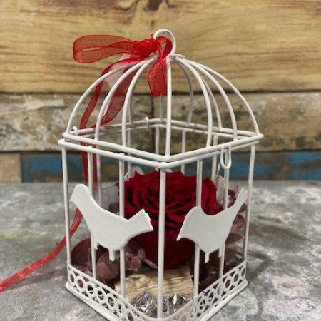 """votre artisan fleuriste vous propose le bouquet : rose rouge stabilisée """"en cage"""""""
