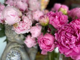 votre artisan fleuriste vous propose le bouquet : VALSE DE PIVOINE