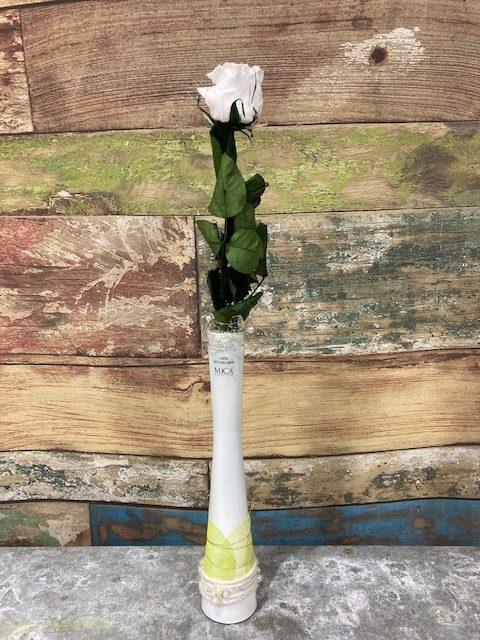 rose blanche stabilisée en vase
