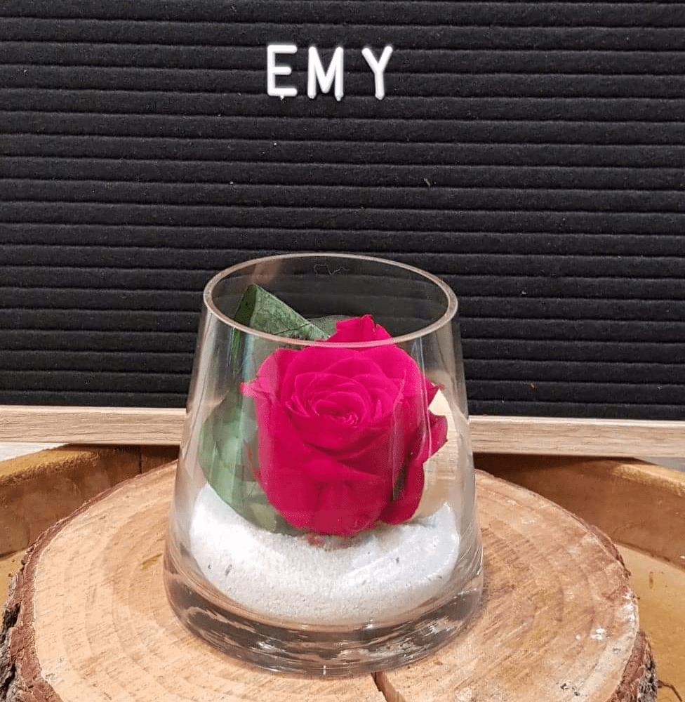 Rose éternelle Emy