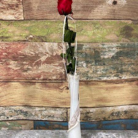 votre artisan fleuriste vous propose le bouquet : rose rouge stabilisée en vase