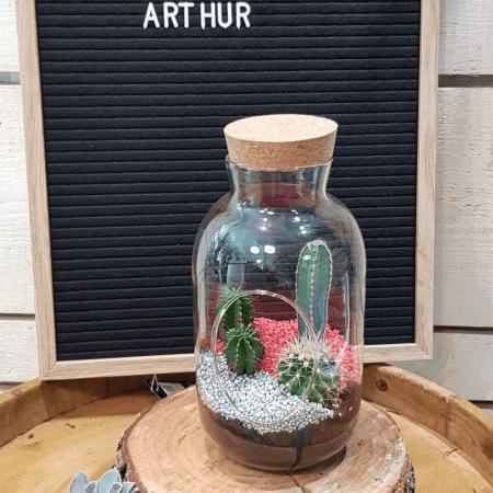 votre artisan fleuriste vous propose le bouquet : Terrarium Arthur
