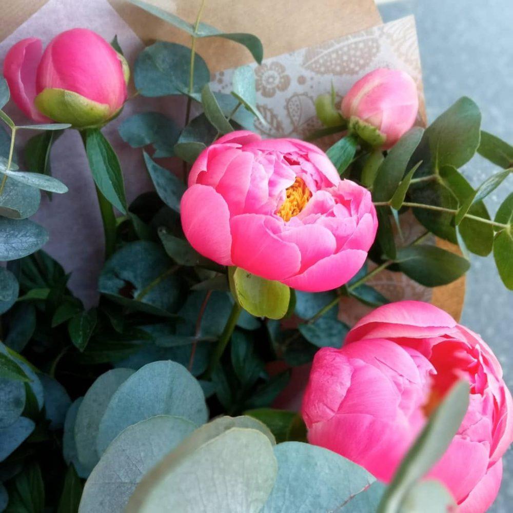Bouquet de 5 pivoines du var ou d'hollande